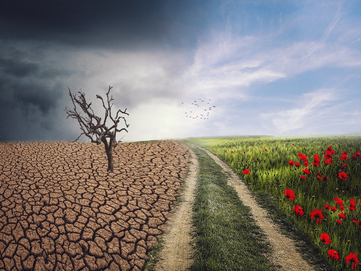 Nick's Blog: Will Climate Change Affect The Economy?
